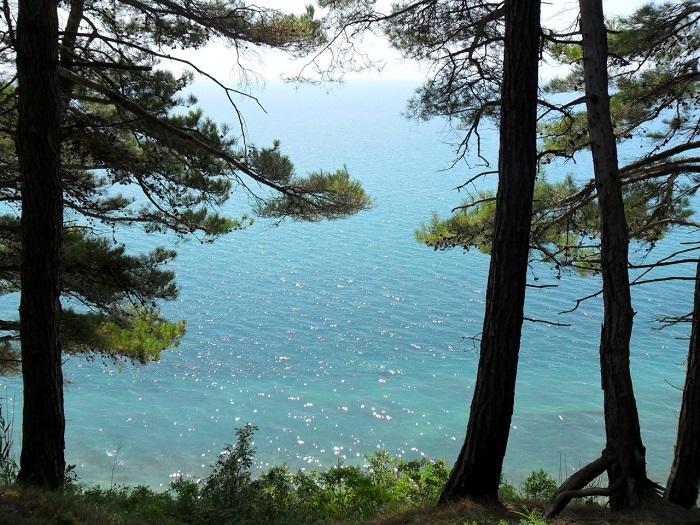 Кемпинг Бриз - вид на черное море