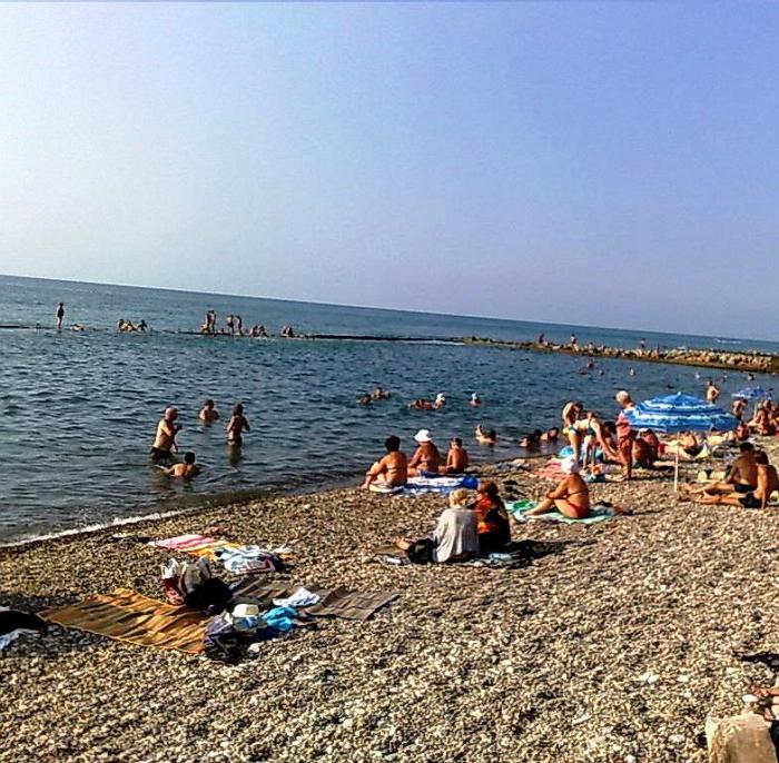 Пляж поселка Весна5