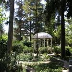 ПАНСИОНАТ «МАССАНДРА» - ЯЛТА8
